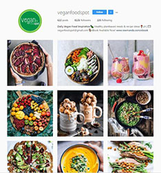 Vegan Foodspot Instagram account image